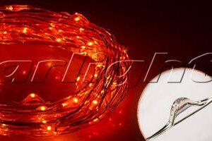 Светодиодный декор / Декоративные нити WR-5000 герметичные WR 12V 20 LED 1608; Изображение товара: 017992 Светодиодная нить WR-5000-12V-Orange (1608,100LED)